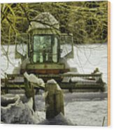 Waiting Out The Snow Wood Print
