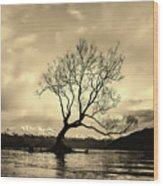 Wanaka Tree - New Zealand Wood Print