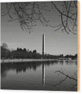 Washington Memorial Framed By Cherry Trees In The Winter Wood Print