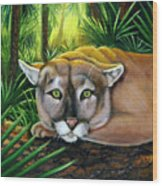 Watching  Florida Panther Wood Print