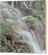 Water Spring Scene Wood Print