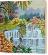 Waterfall After Monsoon Wood Print
