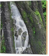 Waterfall In Cradle Mountain Wood Print