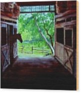 Water's Edge Farm Wood Print by Jack Skinner