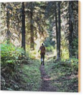 Waterton Valley Trail Detail - Glacier National Park Wood Print