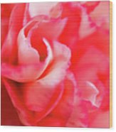 Waves Of Pink Wood Print