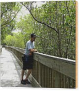 Weedon Island Boardwalk  Wood Print