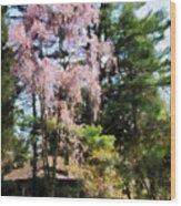 Weeping Cherry Wood Print