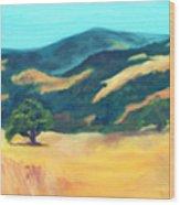 Western Hills Wood Print