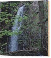 Westfield Falls Wood Print