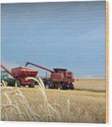Wheat Harvest 2016 Wood Print