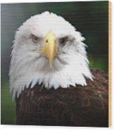 Where Eagles Dare 4 Wood Print