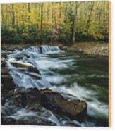 Whitaker Falls In Autumn Wood Print