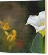 Awakening Flower Wood Print