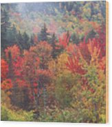 White Mountain Foliage Wood Print