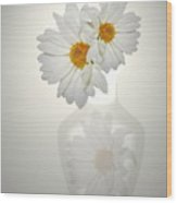 White On White Daisies Wood Print
