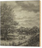 Wickliffe Landscape  Wood Print