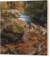 Wicklow Stream Wood Print