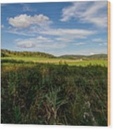 Wide Open Spaces Wood Print