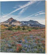Wildflowers At Mt. St. Helen's Wood Print