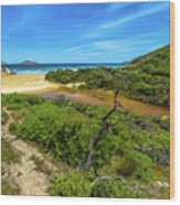 Wilsons Promontory National Park Wood Print