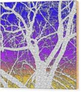 Winter Dusk Wood Print