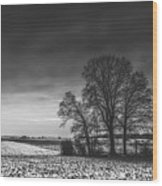 Winter Fields Wood Print