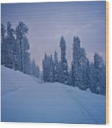 Winter Forest In The Mountains Wood Print