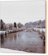 Winter In England  Wood Print