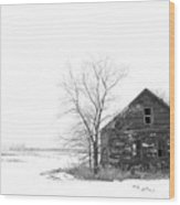 Winter In Pulaski Wood Print