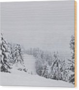 Winter Landscapes Wood Print