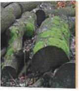 Winter Log Mossy Patterns Wood Print