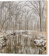 Winter Reflections Wood Print