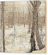 Winter Scene, Montgomery County, Pennsylvania Wood Print