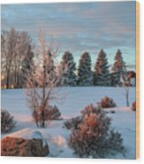 Winter Sunset In Weyburn Wood Print