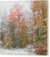 Winterfall  Wood Print