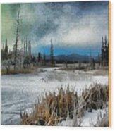 Winters Marsh Wood Print