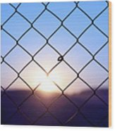 Wire Mesh Fence On A Sunset Background Wood Print