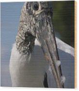 Wood Stork Wood Print
