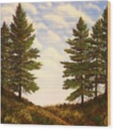Wooded Path Wood Print