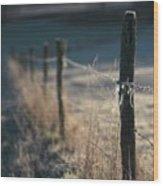Wooden Posts Wood Print by Bernard Jaubert