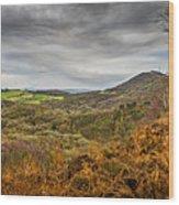 Wrekin View Wood Print