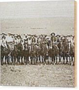 Wyoming: Cowboys, C1883 Wood Print