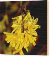Yellow Buds Wood Print
