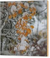 Yellow Leaves Wood Print