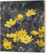Yellow Lust Wood Print