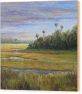 Yellow Marsh Wood Print