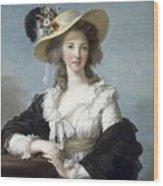 Yolande-martine-gabrielle De Polastron Duchesse De Polignac Lisabeth Louise Vige Le Brun Wood Print