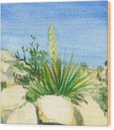 Yucca Tree Wood Print