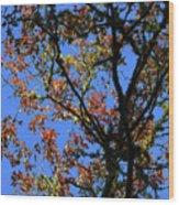10-15-16--0777 Blue Sky # 3 Don't Drop The Crystal Ball Wood Print